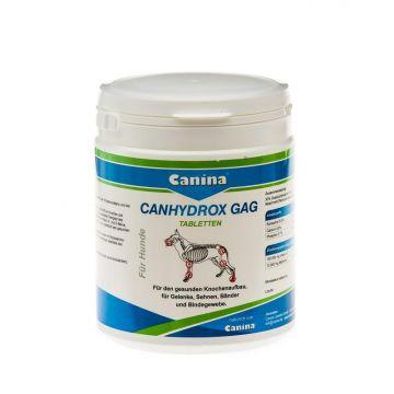 Canina Pharma Canhydrox GAG Tabletten 600g