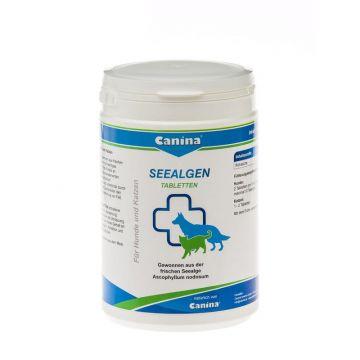Canina Pharma Seealgen Tabletten 750g